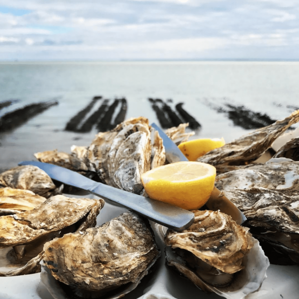 Cancale, The Oyster Capital Of France - Oyster Market