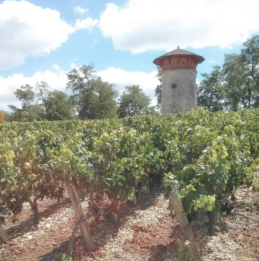 Medoc - The Château Lanessan Winery