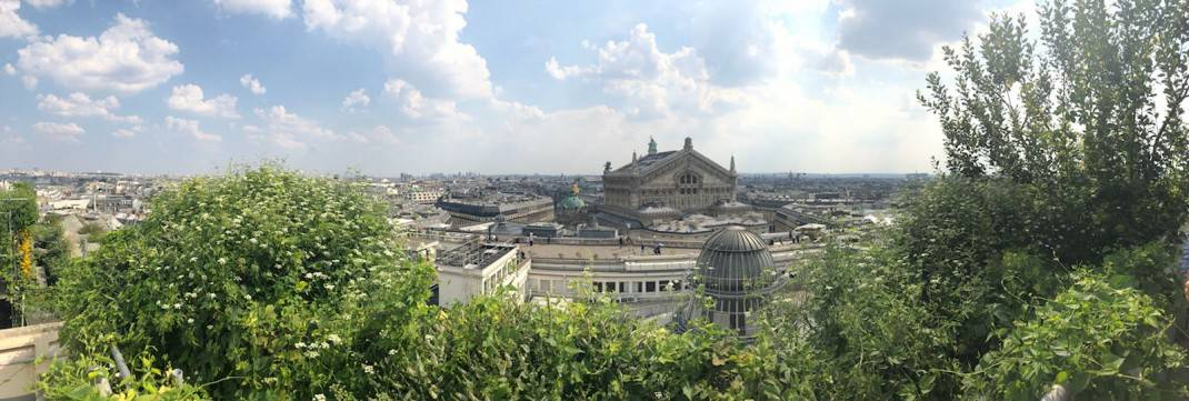 View from Galeries Lafayette secret rooftop garden