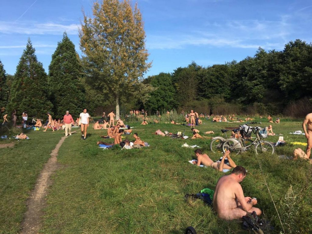 naturists at a park in France